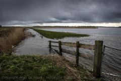 Hoge waterstand zet landerijen en natuurgebieden onder water